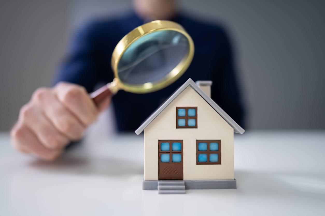 Lupa grande inspeccionando una casa